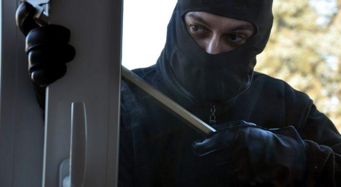 В Запорожье задержана преступная группа (Фото)