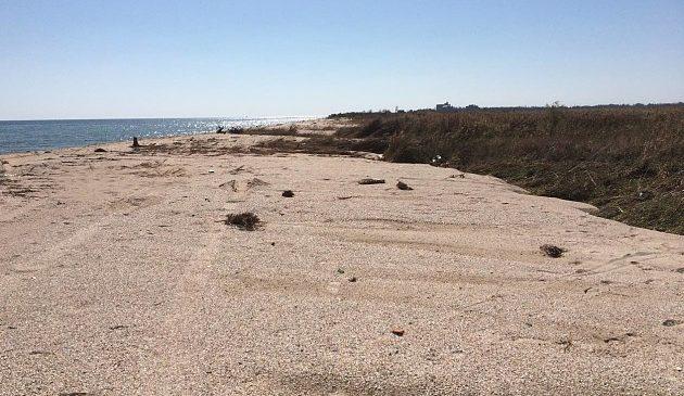 Фотофакт: у Запорізькій області море намило пляж (фото)