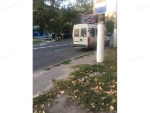У Запорізькій області водій маршрутки обкидав пенсіонерку монетами