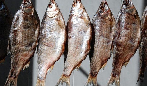 В Запорожской области два человека после употребления вяленой рыбы заболели ботулизмом, — Лабораторный центр