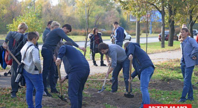 В Запорожье неравнодушные горожане посадили деревья