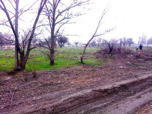 У Запорізькій області на лавки, освітлення та зелені зони «дали» 75 тисяч гривень