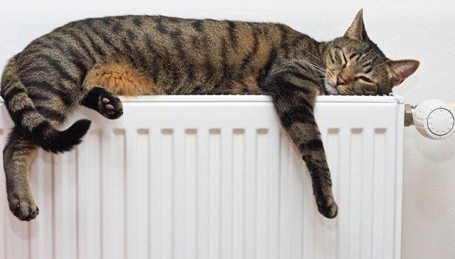 У Запорізькій області в окремих квартирах уже дали опалення, — Соцмережі