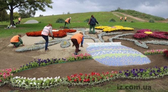В сети появились фото установленных к Покровской ярмарке в Запорожье цветочных композиций (Фото)