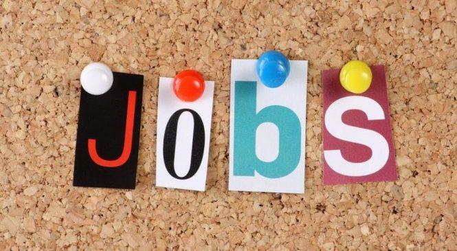 У Запорізькій області безробітних удесятеро більше ніж вакансій