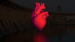 Що зміниться у Запоріжжі після 1 січня, коли почне діяти новий закон про трансплантацію