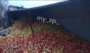 В сети появилось видео с места ДТП в Запорожской области, где фура с тоннами фруктов оказалась в кювете