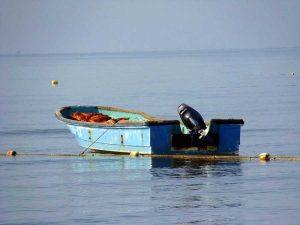 В Запорожской области без вести пропали двое рыбаков