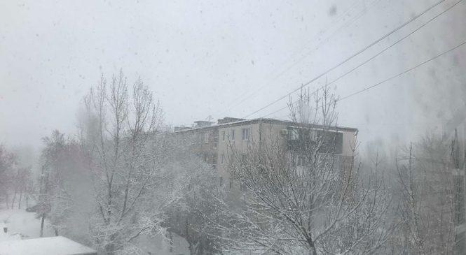 Фотофакт: Бердянск засыпает снегом