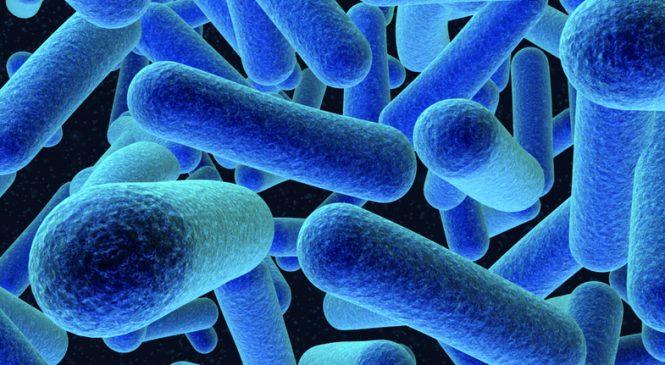 У Запоріжжі зросла кількість захворювань кишковими інфекціями