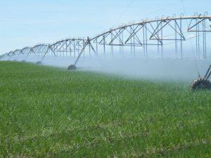 У Запорізькій області низький рівень штучного поливу орних земель: охоплено трохи більше 10%