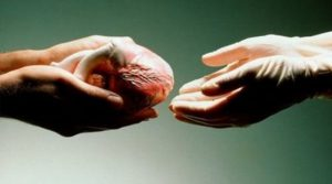 Запорізький лікар про органне донорство: багато пацієнтів не  хвилює навіть банальний медичний огляд