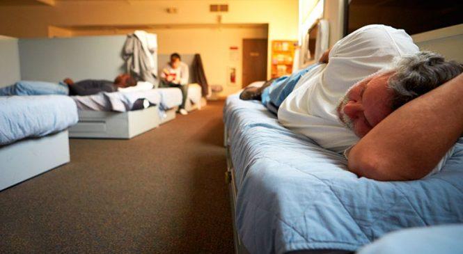 В Запорожской области закрыли приют для бездомных