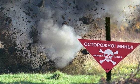 Житель запорожской области нашел в огороде мины
